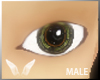 [Sc] Male Hazel Eye