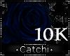 10k Support Rose
