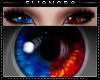 夜 Elianora Eyes
