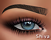 S. Olia Brows Brown