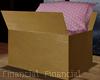 Moving Pillow Box
