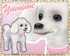 [Y] Pet Poodle ~ White