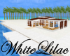 WL~ Beach Wedding Scene