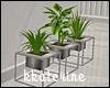 [kk] Modern Plants