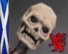 Dark Skull Pet