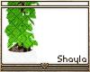 ~S~ Simple Plant 4