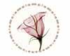 Crea Rugs Flower 3