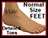 Normal Feet