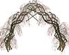 Delicate Vine Arch 4
