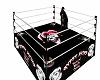 TK(JDS) GJ Boxing Ring