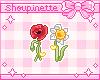 Coquelicot & Daffodil