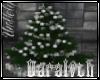(D)Silver Yule Tree