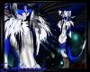 Dutch Angel Dragon Fkini