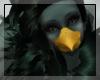 tn~Pidgeon Wings
