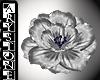 $.Shoulder fleur