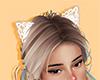 Lace Cat !