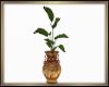 Lush Plant Derive