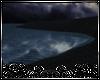 ⚔ Black Cove