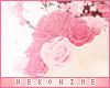 [HIME] Aimer Roses