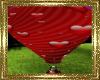~D~  Air Balloon Ride