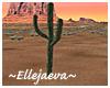 Saguaro Desert Cactus