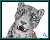 (A) Snow Leopard