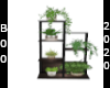 sea side plant stand