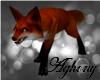 A: Pet Fox