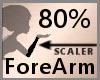 Scale FireArn 80% F A