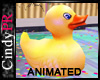 Rubber Animated Duck