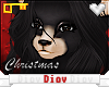 *D* Joy Bear Male Furry