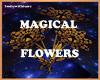 MagicalFlowers