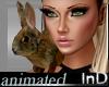 IN} Beatrix Bunny /Anim