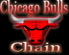 Chicago Bulls Chain