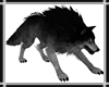 Black Wolf Pet