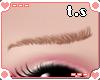 *ts* Shy Eyebrow [Brn]