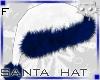 Hat WhiteBlue F1a Ⓚ