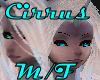Cirrus Cloud Ears
