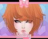 🎀Madoc Fox