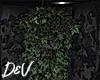 !D Hanging Ivy