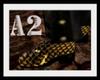 [A2] snake boots