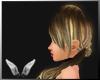 [Sc]  Saemi Blonde Dark