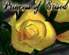 !PoE! Roses Yellow Peach