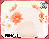 . cream | flowers