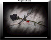 Blackrose Picture Frame