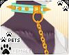 [Pets]LeashCollar | aqua