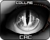 [CAC] Spotteeh Eyes M/F