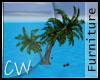 .CW.Coconut Bahamas