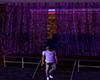 Purple Urban Courtain
