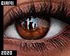 Mesh Eyes   Kora
